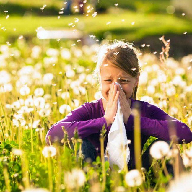 Allergien TCM Heuschnupfen