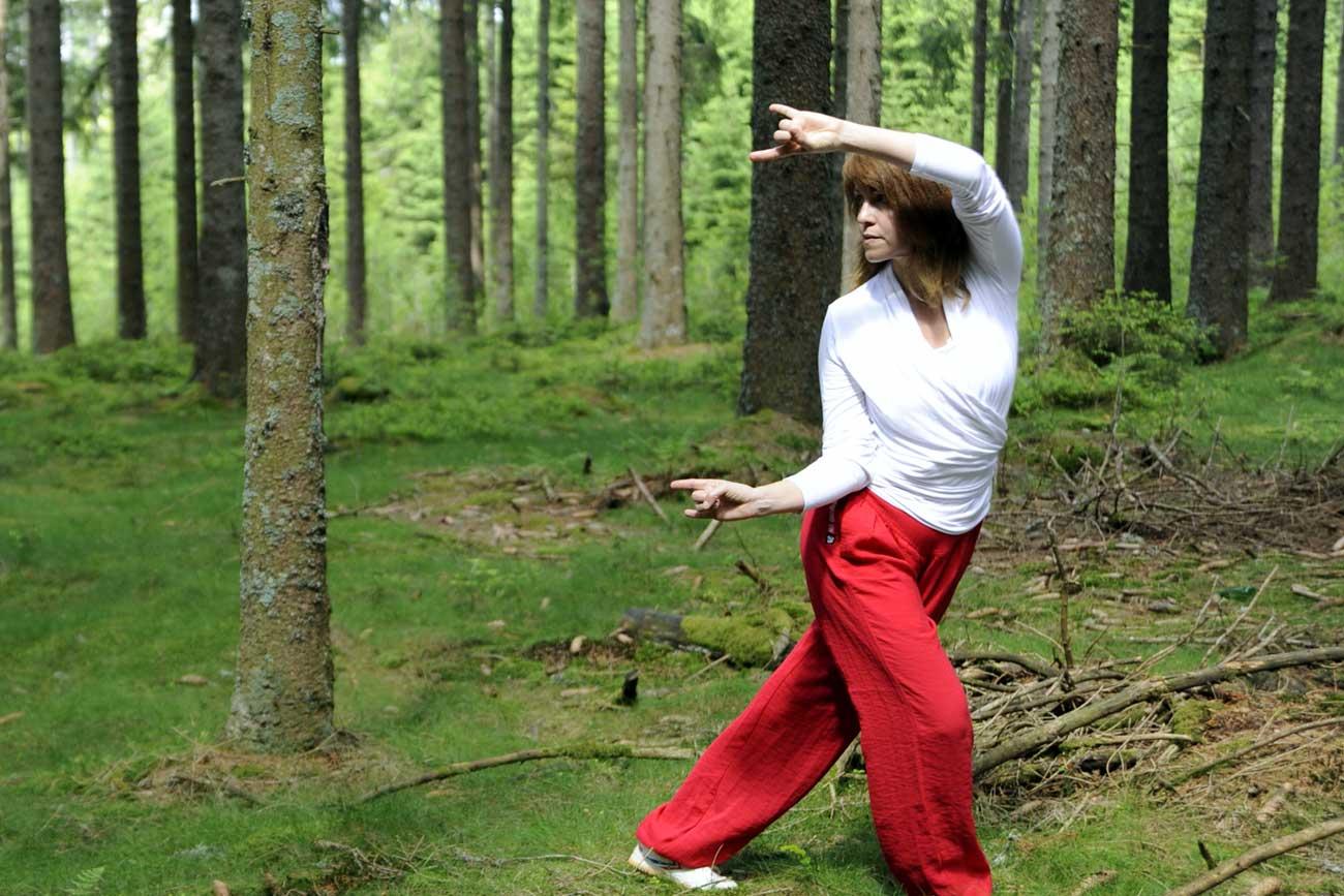 Qigong - Das Spiel der Tiere – Wu Qin Xi